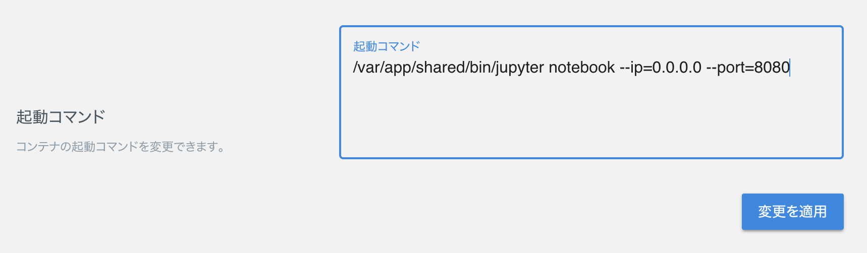 command-input-jupyter.png